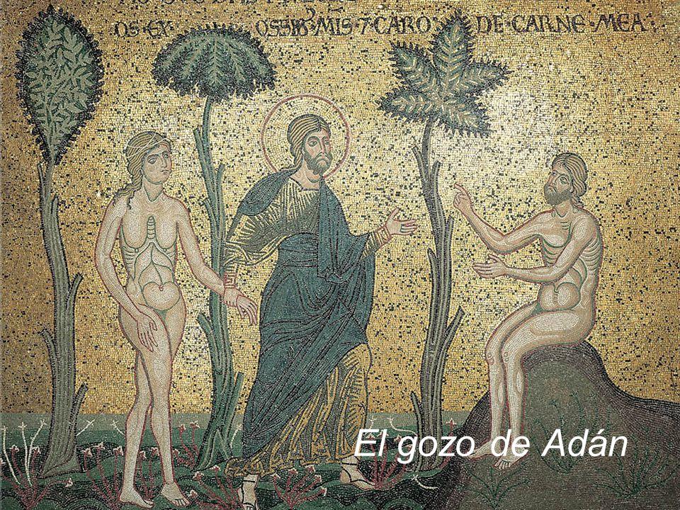 El gozo de Adán