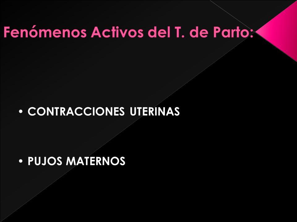CONTRACCIONES UTERINAS PUJOS MATERNOS