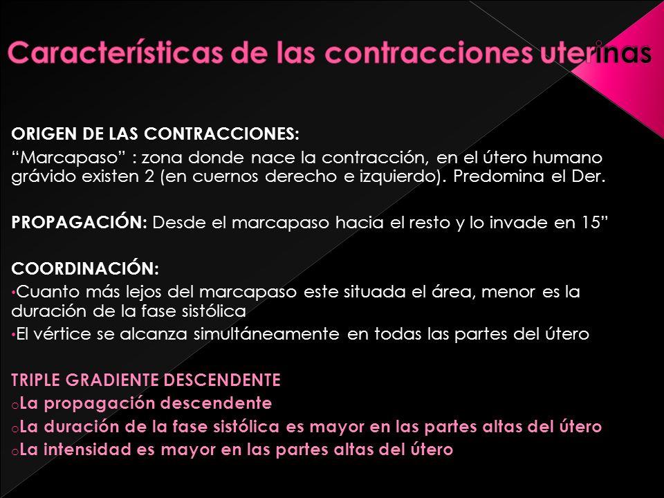 ORIGEN DE LAS CONTRACCIONES: Marcapaso : zona donde nace la contracción, en el útero humano grávido existen 2 (en cuernos derecho e izquierdo). Predom