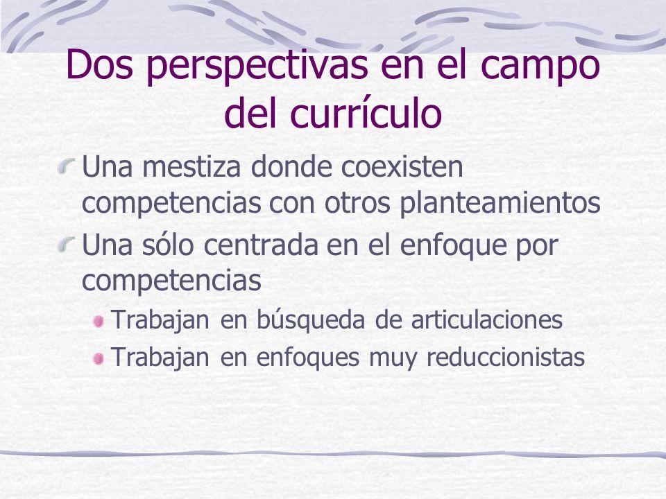 Dos perspectivas en el campo del currículo Una mestiza donde coexisten competencias con otros planteamientos Una sólo centrada en el enfoque por compe