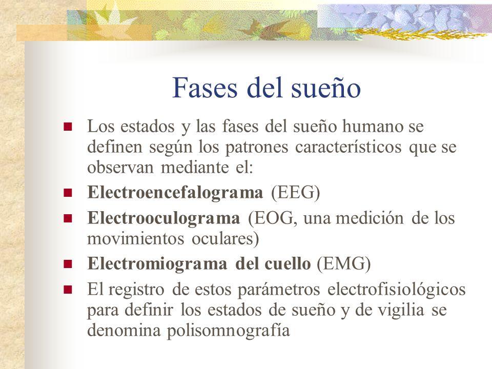Fases del sueño Los estados y las fases del sueño humano se definen según los patrones característicos que se observan mediante el: Electroencefalograma (EEG) Electrooculograma (EOG, una medición de los movimientos oculares) Electromiograma del cuello (EMG) El registro de estos parámetros electrofisiológicos para definir los estados de sueño y de vigilia se denomina polisomnografía