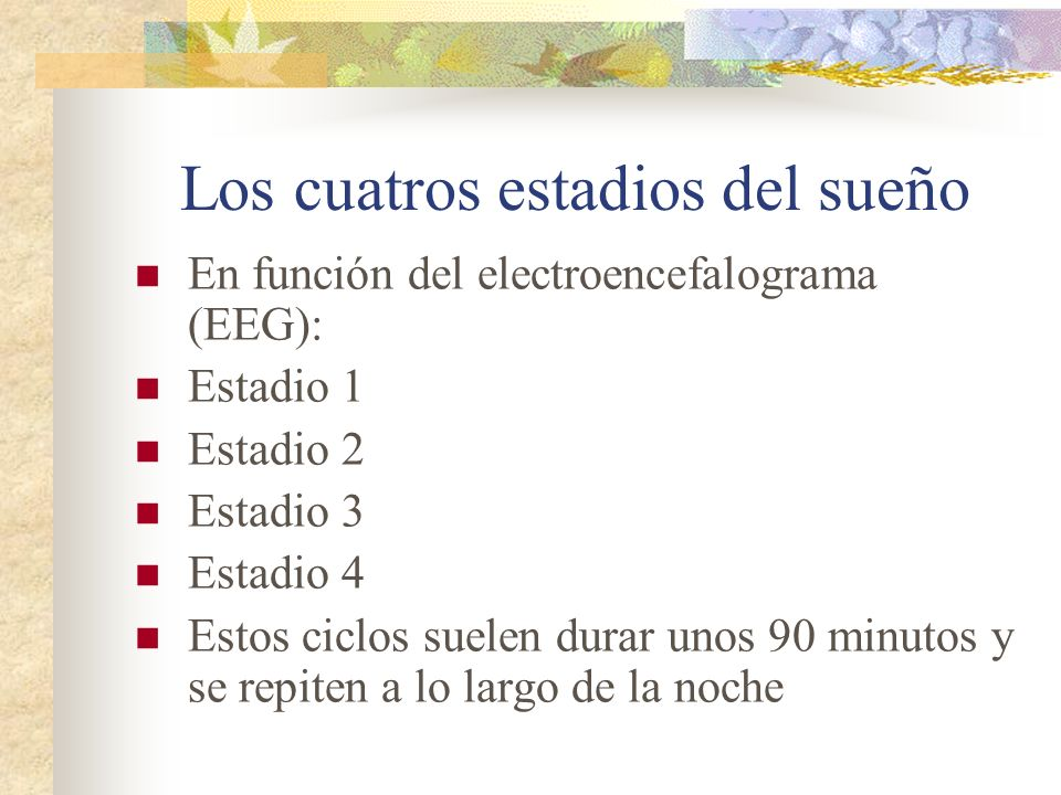 Los cuatros estadios del sueño En función del electroencefalograma (EEG): Estadio 1 Estadio 2 Estadio 3 Estadio 4 Estos ciclos suelen durar unos 90 minutos y se repiten a lo largo de la noche