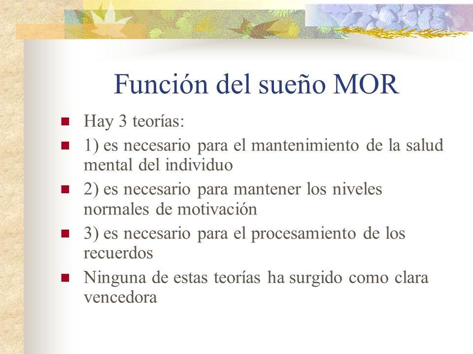 Función del sueño MOR Hay 3 teorías: 1) es necesario para el mantenimiento de la salud mental del individuo 2) es necesario para mantener los niveles normales de motivación 3) es necesario para el procesamiento de los recuerdos Ninguna de estas teorías ha surgido como clara vencedora