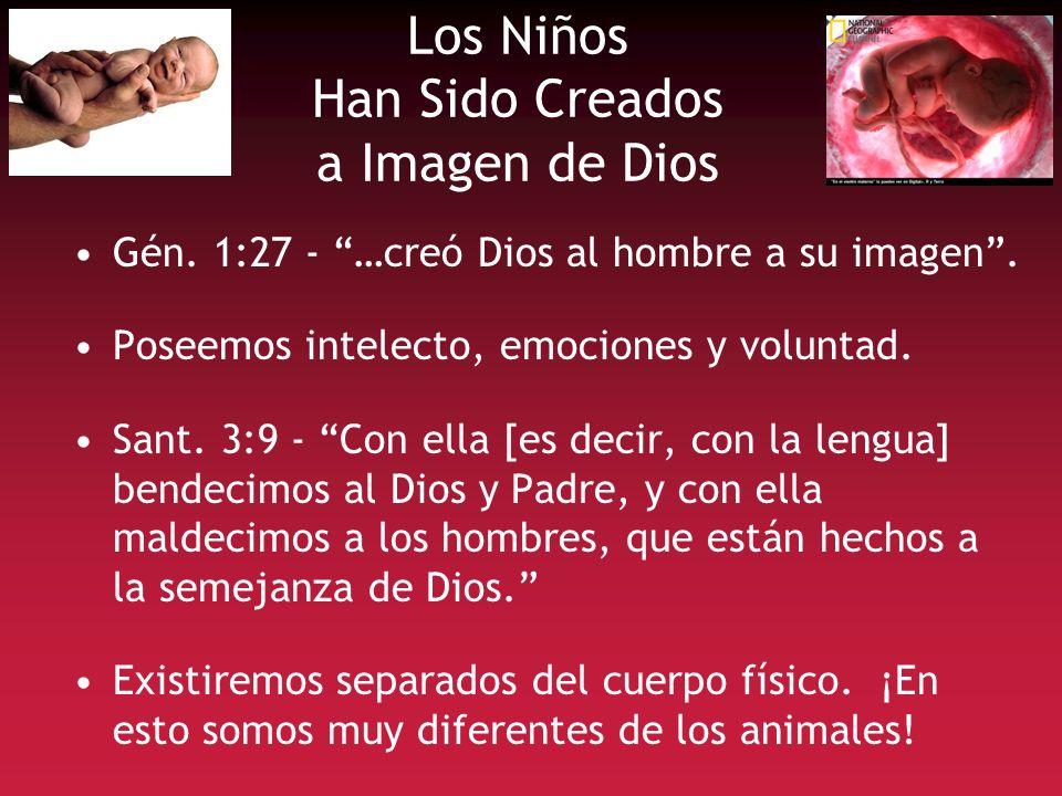 Los Niños Han Sido Creados a Imagen de Dios Gén. 1:27 - …creó Dios al hombre a su imagen. Poseemos intelecto, emociones y voluntad. Sant. 3:9 - Con el