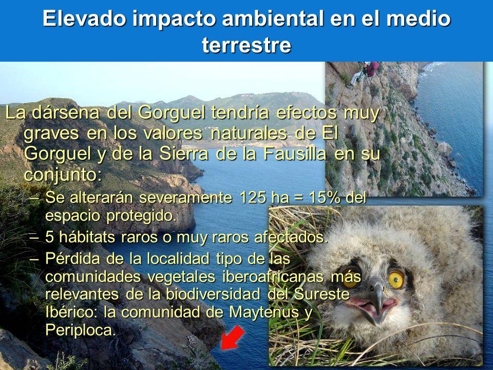 Elevado impacto ambiental en el medio terrestre La dársena del Gorguel tendría efectos muy graves en los valores naturales de El Gorguel y de la Sierr