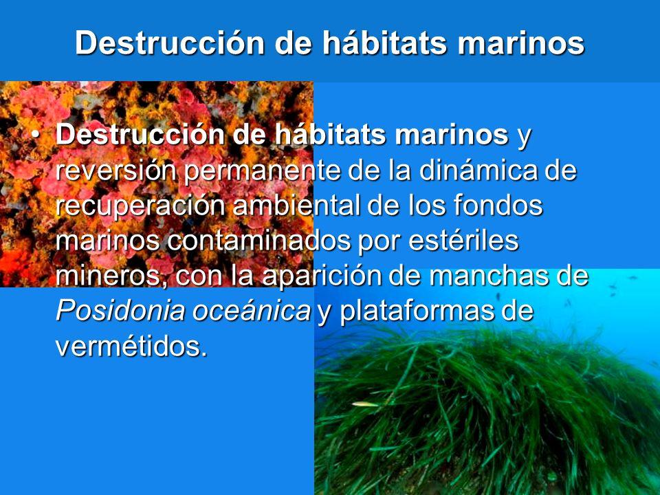 Destrucción de hábitats marinos Destrucción de hábitats marinos y reversión permanente de la dinámica de recuperación ambiental de los fondos marinos