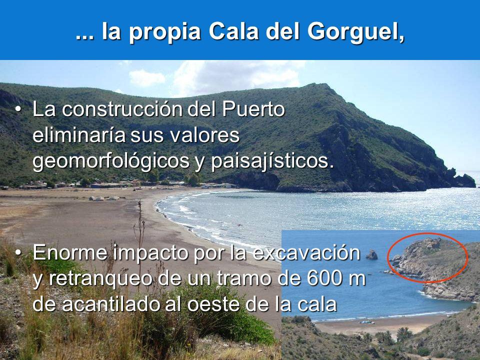 ... la propia Cala del Gorguel, La construcción del Puerto eliminaría sus valores geomorfológicos y paisajísticos.La construcción del Puerto eliminarí