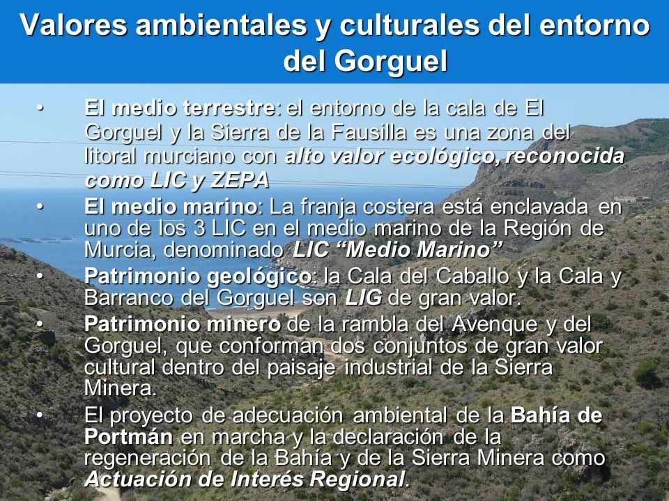Valores ambientales y culturales del entorno del Gorguel El medio terrestre: el entorno de la cala de El Gorguel y la Sierra de la Fausilla es una zon