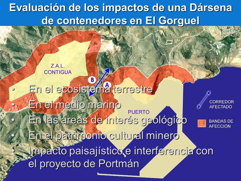 Evaluación de los impactos de una Dársena de contenedores en El Gorguel En el ecosistema terrestreEn el ecosistema terrestre En el medio marinoEn el m