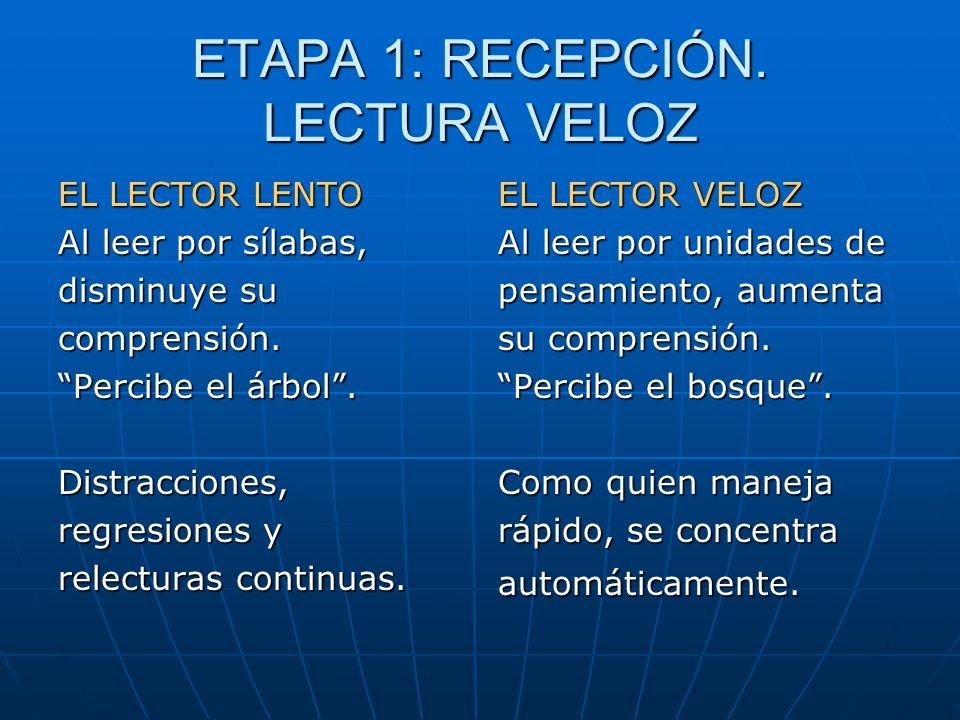 ETAPA 1: RECEPCIÓN. LECTURA VELOZ EL LECTOR LENTO Al leer por sílabas, disminuye su comprensión. Percibe el árbol. Distracciones, regresiones y relect