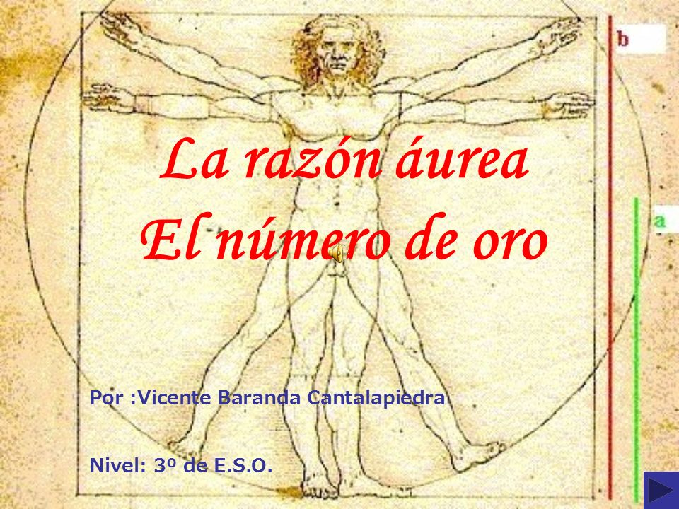 La razón áurea El número de oro Por :Vicente Baranda Cantalapiedra Nivel: 3º de E.S.O.