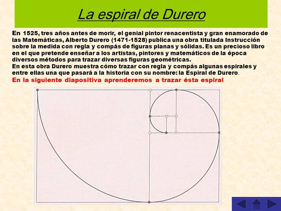 El número de oro se obtiene de una manera sencilla partiendo de un cuadrado de lado 2 u.m. y construyendo el rectángulo áureo Partimos de un cuadrado