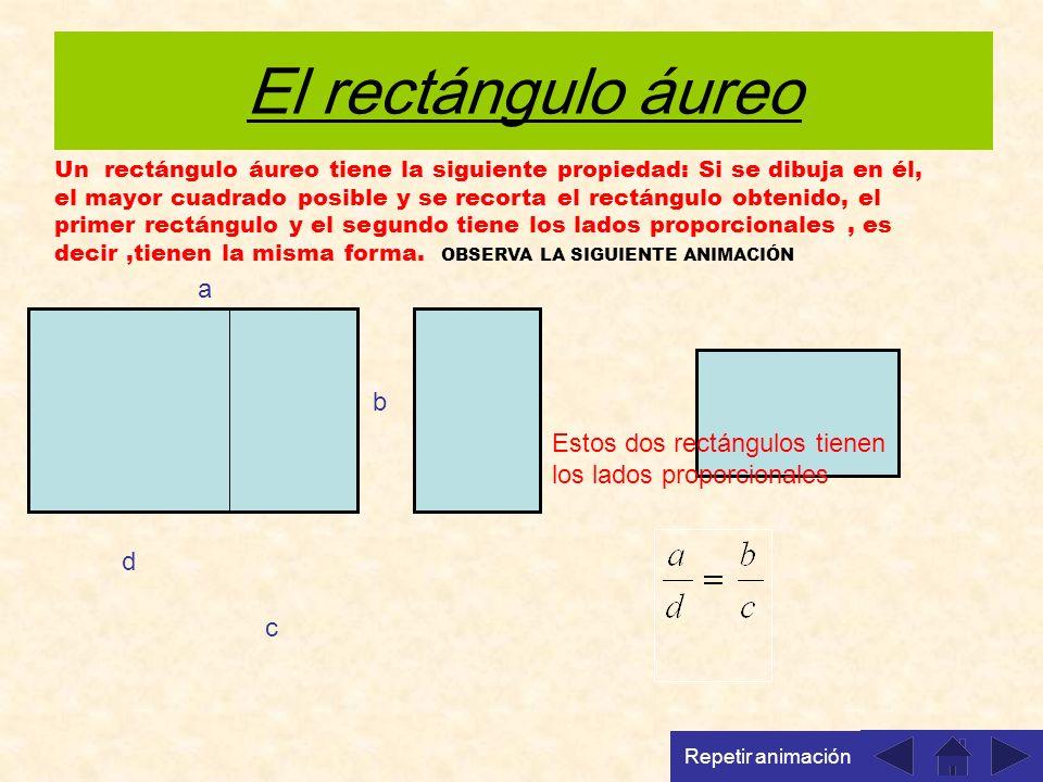 El rectángulo áureo Un rectángulo áureo tiene la siguiente propiedad: Si se dibuja en él, el mayor cuadrado posible y se recorta el rectángulo obtenido, el primer rectángulo y el segundo tiene los lados proporcionales, es decir,tienen la misma forma.