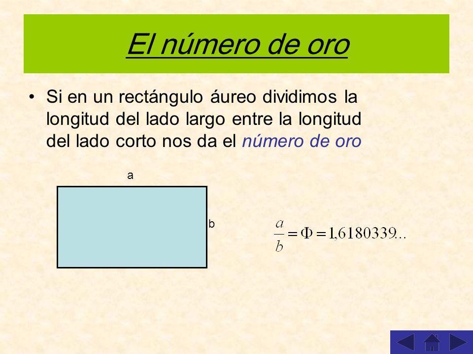 El número de oro Si en un rectángulo áureo dividimos la longitud del lado largo entre la longitud del lado corto nos da el número de oro a b