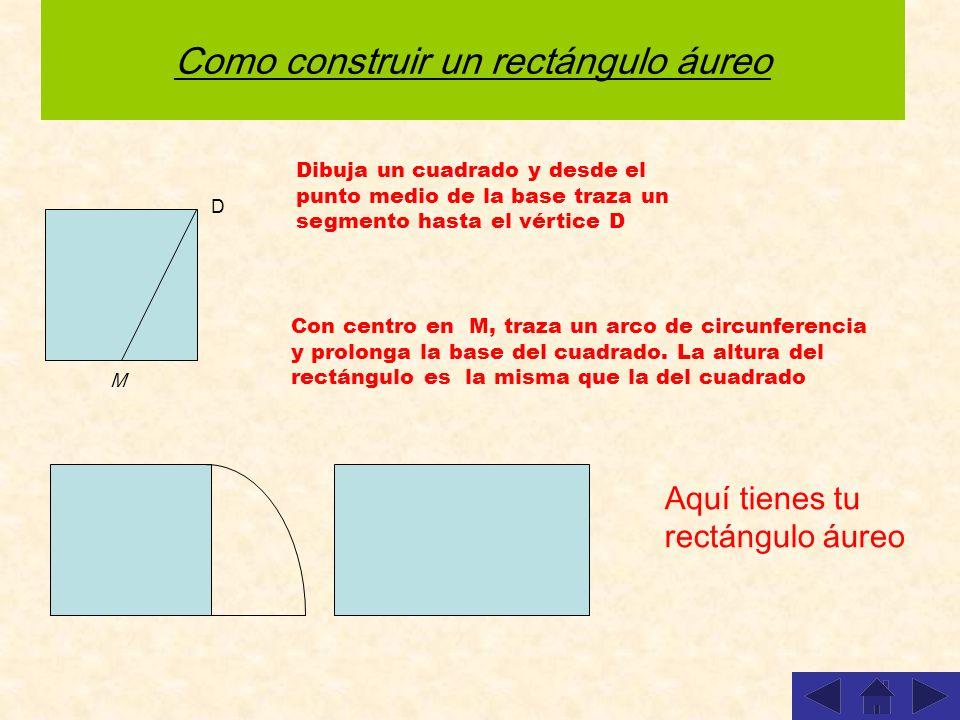 Como construir un rectángulo áureo Dibuja un cuadrado y desde el punto medio de la base traza un segmento hasta el vértice D Aquí tienes tu rectángulo áureo D M Con centro en M, traza un arco de circunferencia y prolonga la base del cuadrado.