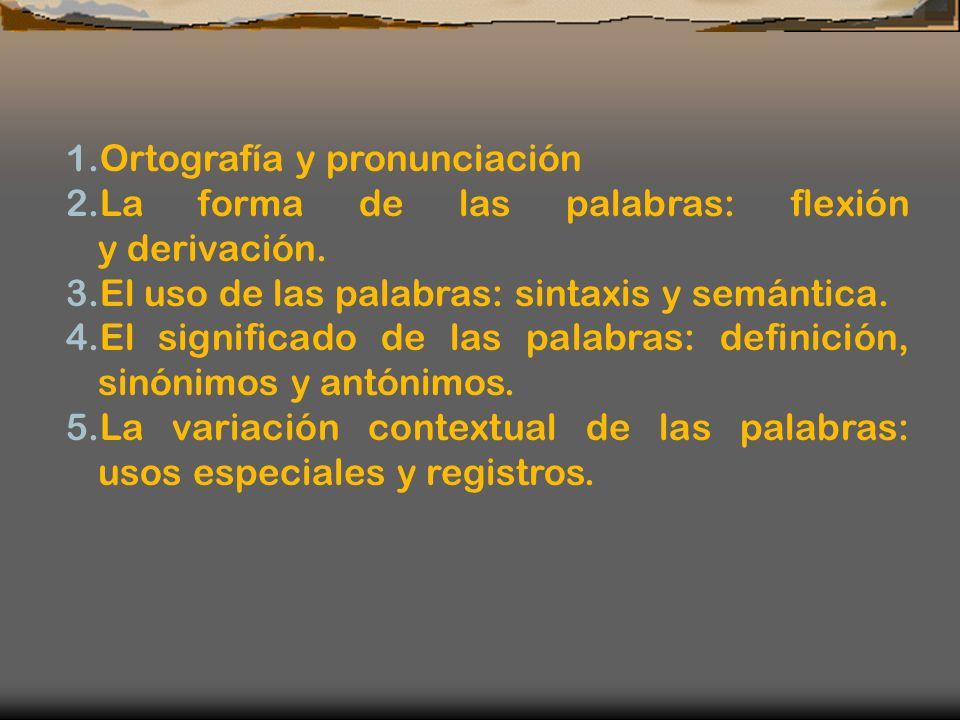 1.Ortografía y pronunciación 2.La forma de las palabras: flexión y derivación. 3.El uso de las palabras: sintaxis y semántica. 4.El significado de las
