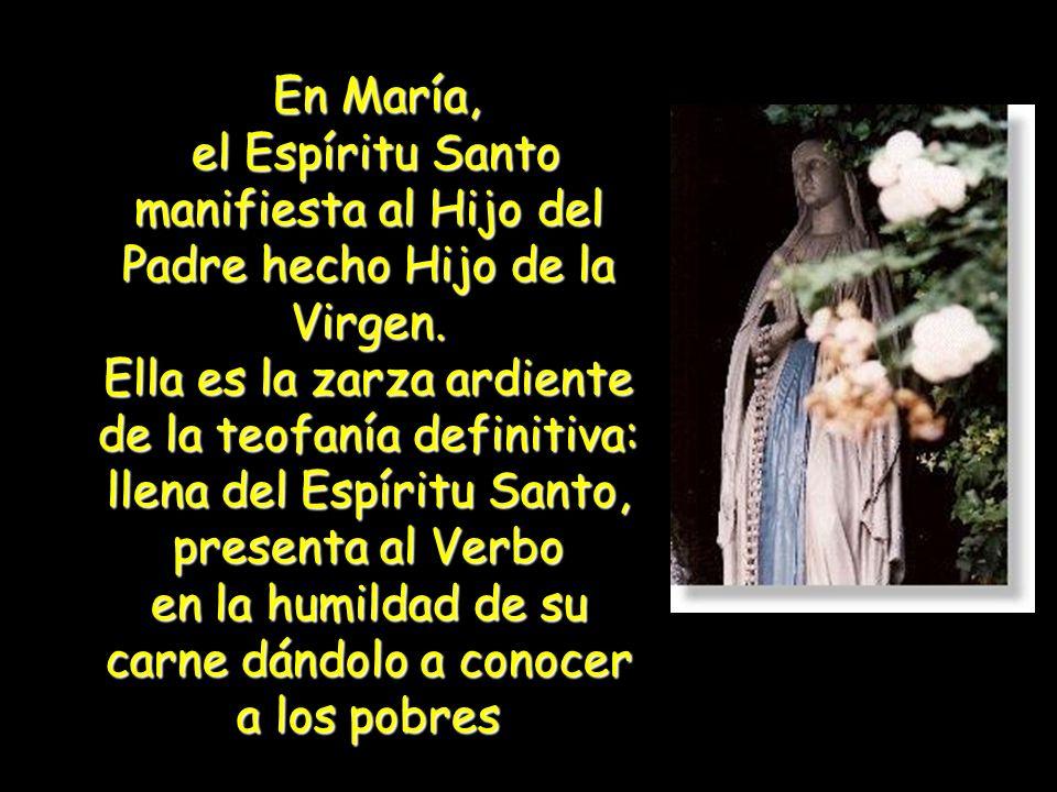 En María el Espíritu Santo realiza el designio benevolente del Padre. La Virgen concibe y da a luz al Hijo de Dios con y por medio del Espíritu Santo.