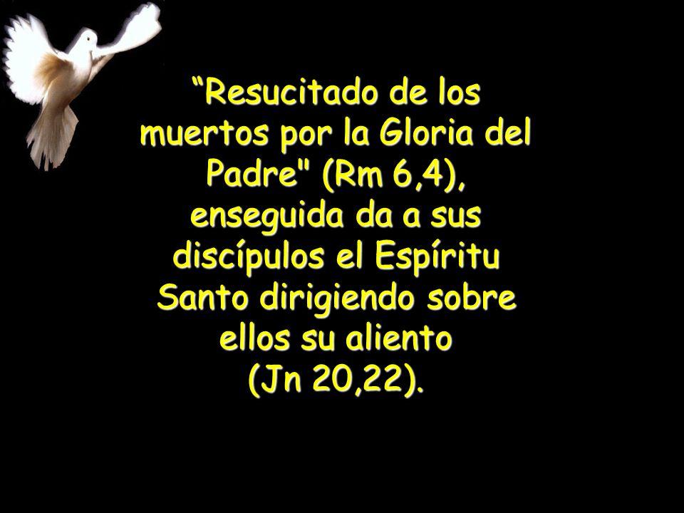 En María, En María, el Espíritu Santo manifiesta al Hijo del Padre hecho Hijo de la Virgen. el Espíritu Santo manifiesta al Hijo del Padre hecho Hijo