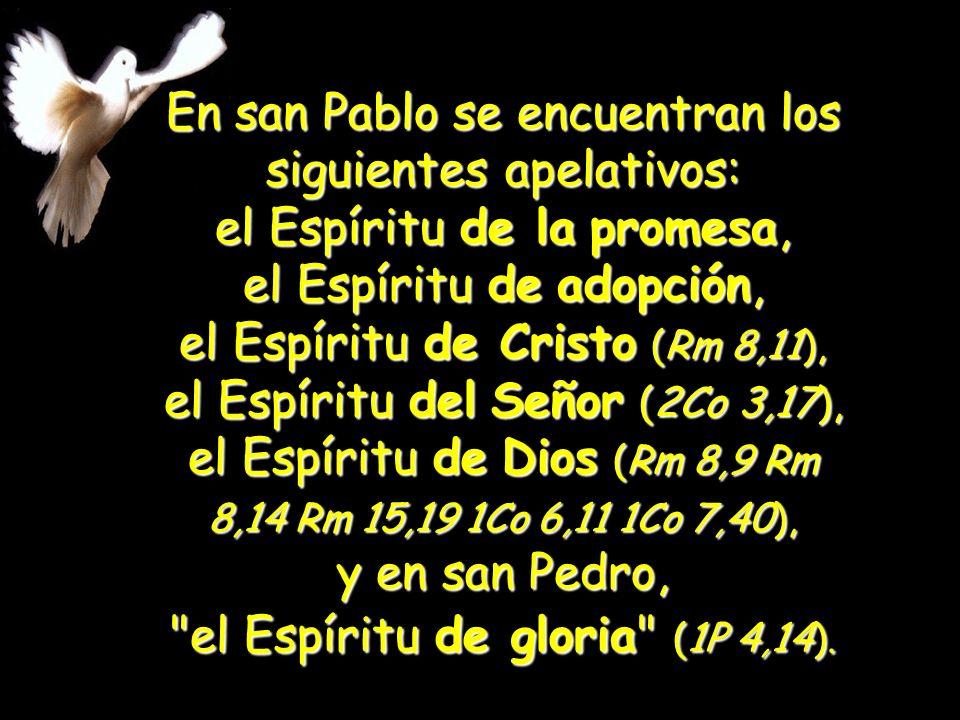En san Pablo se encuentran los siguientes apelativos: el Espíritu de la promesa, el Espíritu de adopción, el Espíritu de Cristo (Rm 8,11), el Espíritu del Señor (2Co 3,17), el Espíritu de Dios (Rm 8,9 Rm 8,14 Rm 15,19 1Co 6,11 1Co 7,40), y en san Pedro, el Espíritu de gloria (1P 4,14).