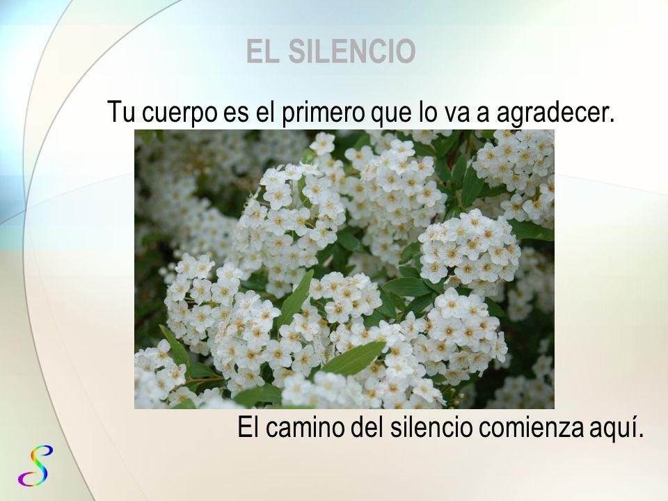 EL SILENCIO José Fernández MORATIEL Escuela del silencio www.dominicos.org/manresa/silencio