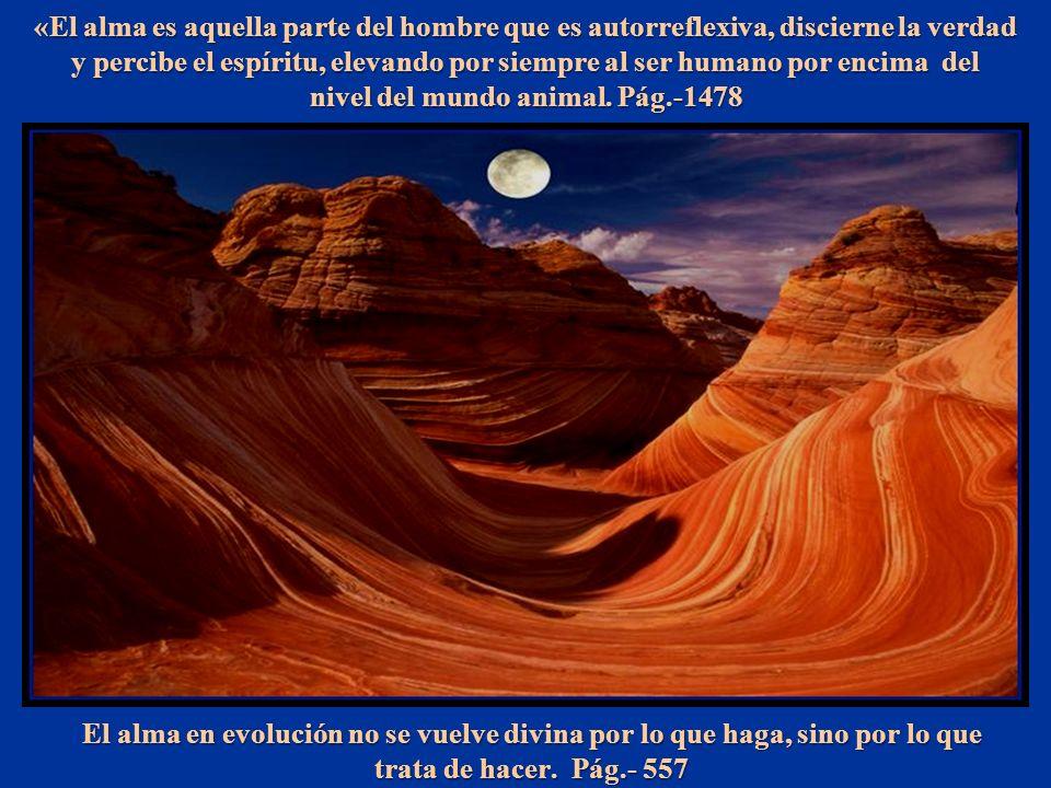 El alma en evolución no se vuelve divina por lo que haga, sino por lo que trata de hacer.