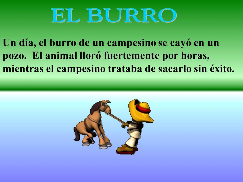 Un día, el burro de un campesino se cayó en un pozo. El animal lloró fuertemente por horas, mientras el campesino trataba de sacarlo sin éxito.