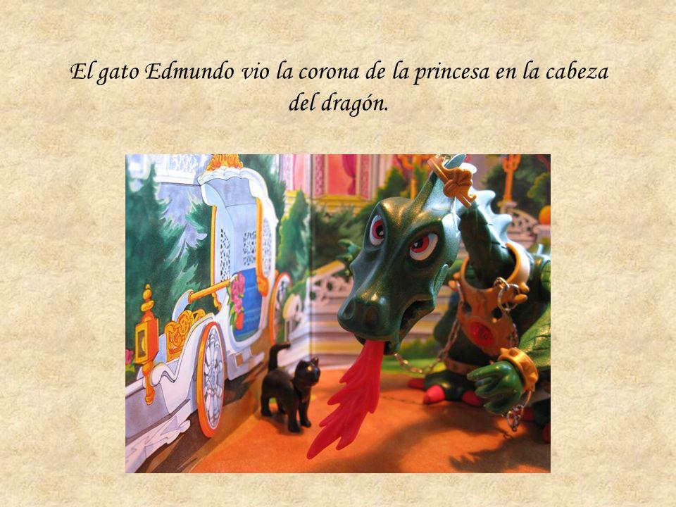 El gato Edmundo vio la corona de la princesa en la cabeza del dragón.