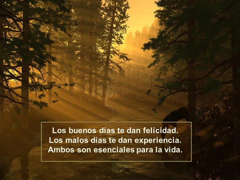 Espero que estas palabras puedan ayudarte a entender, que Dios nunca renunciará a ti. Nunca te arrepientas de un día en tu vida.