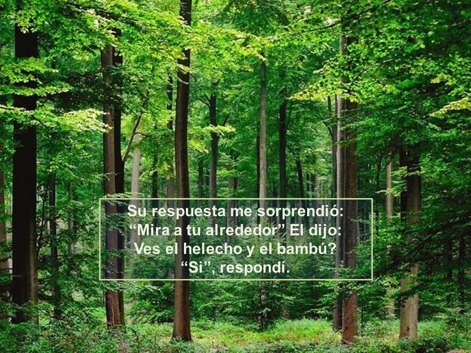 Dios, le dije: ¿Podrías darme una buena razón, para no darme por vencido?