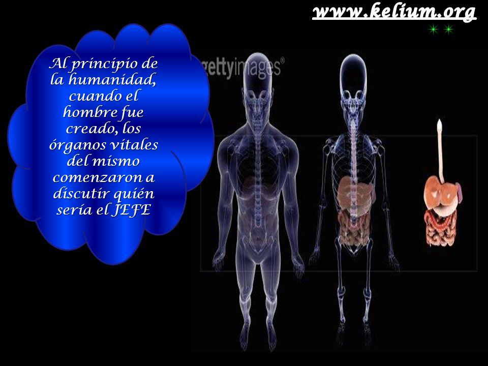 Al principio de la humanidad, cuando el hombre fue creado, los órganos vitales del mismo comenzaron a discutir quién sería el JEFE