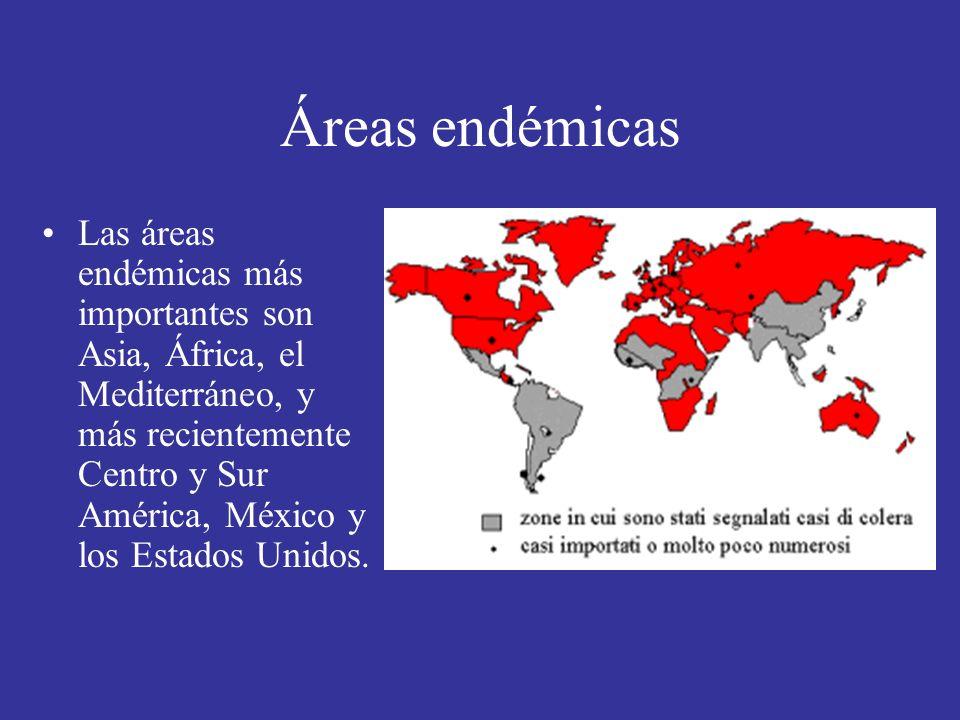 Áreas endémicas Las áreas endémicas más importantes son Asia, África, el Mediterráneo, y más recientemente Centro y Sur América, México y los Estados Unidos.