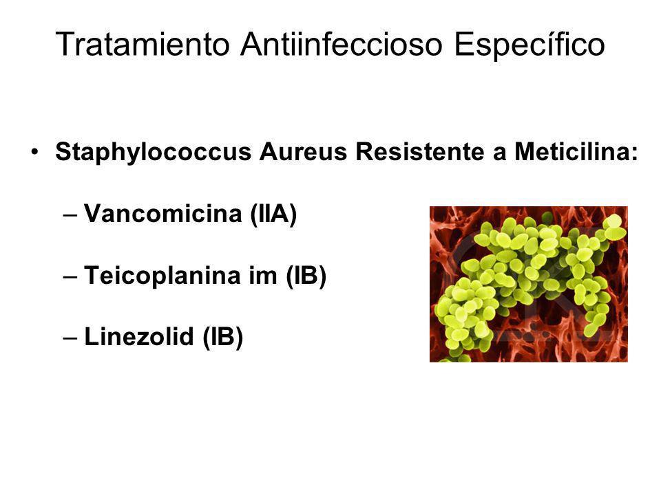 Tratamiento Antiinfeccioso Específico Staphylococcus Aureus Resistente a Meticilina: –Vancomicina (IIA) –Teicoplanina im (IB) –Linezolid (IB)
