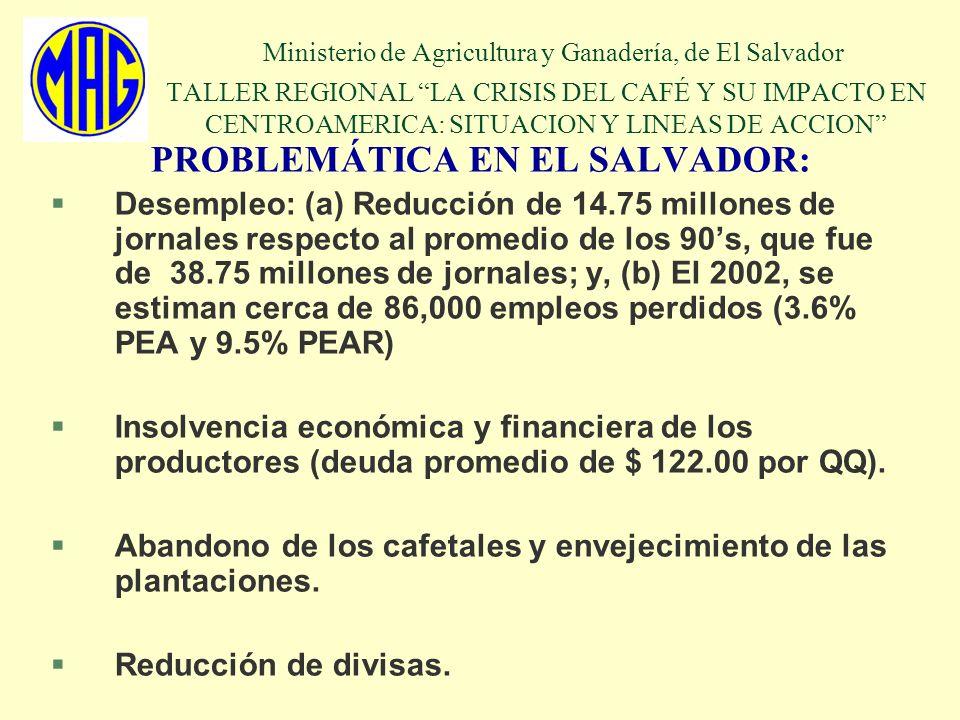 Ministerio de Agricultura y Ganadería, de El Salvador TALLER REGIONAL LA CRISIS DEL CAFÉ Y SU IMPACTO EN CENTROAMERICA: SITUACION Y LINEAS DE ACCION P