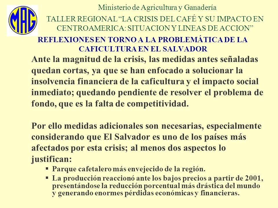 REFLEXIONES EN TORNO A LA PROBLEMÁTICA DE LA CAFICULTURA EN EL SALVADOR Ante la magnitud de la crisis, las medidas antes señaladas quedan cortas, ya q