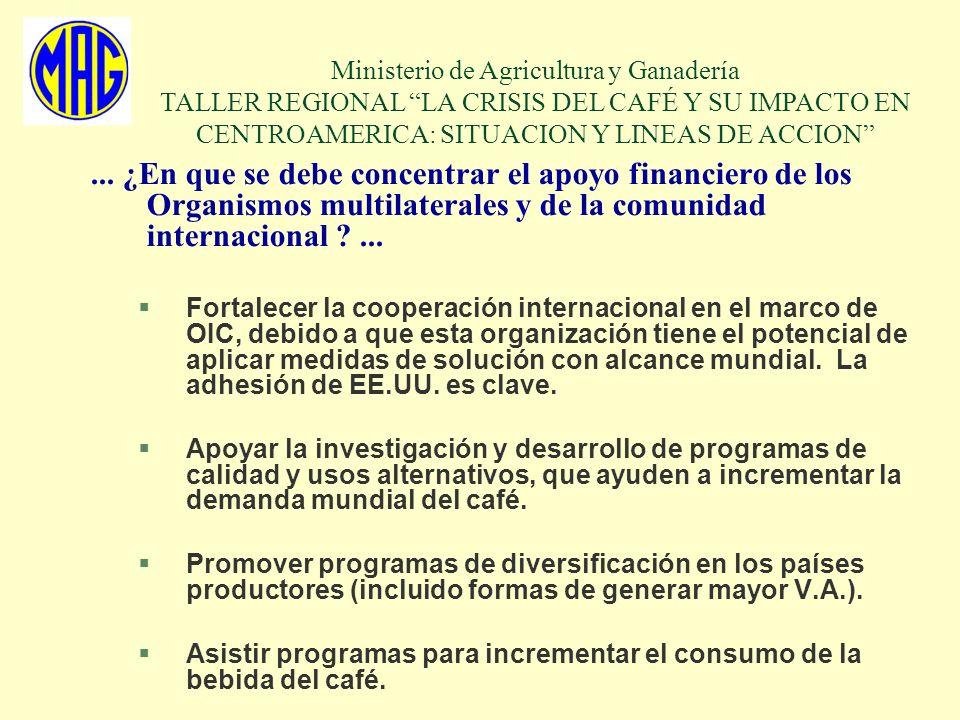 ... ¿En que se debe concentrar el apoyo financiero de los Organismos multilaterales y de la comunidad internacional ?... §Fortalecer la cooperación in