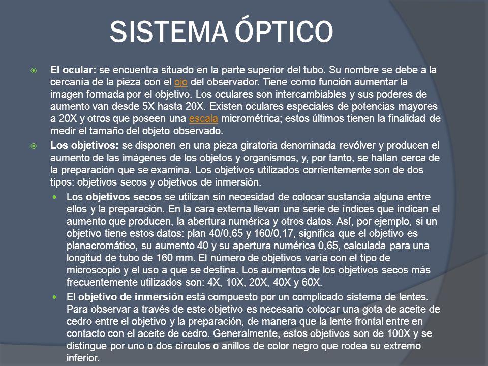 SISTEMA ÓPTICO El ocular: se encuentra situado en la parte superior del tubo. Su nombre se debe a la cercanía de la pieza con el ojo del observador. T