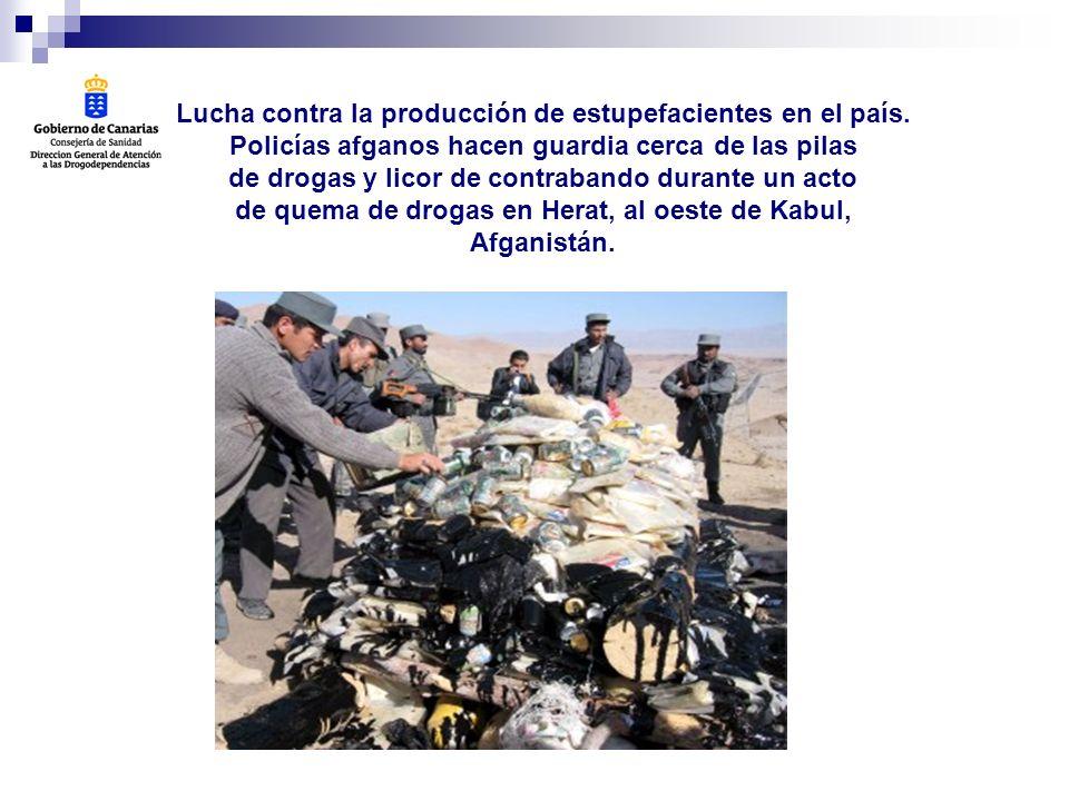 DATOS DE CONSUMO POR PROVINCIAS La prevalencia de consumo fue mayor en la provincia de Las Palmas para todas las sustancias, excepto para tranquilizantes y alcohol.