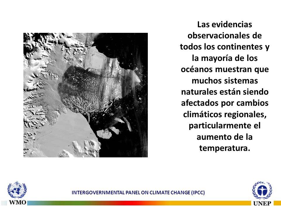 Las evidencias observacionales de todos los continentes y la mayoría de los océanos muestran que muchos sistemas naturales están siendo afectados por