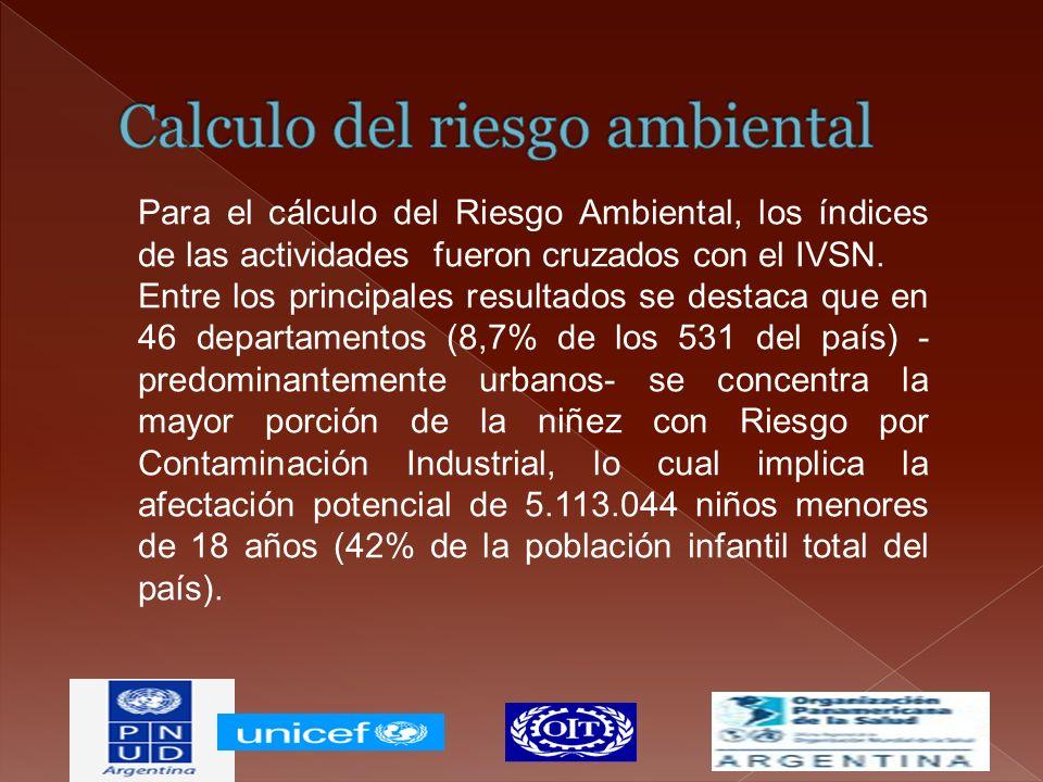 Para el cálculo del Riesgo Ambiental, los índices de las actividades fueron cruzados con el IVSN. Entre los principales resultados se destaca que en 4