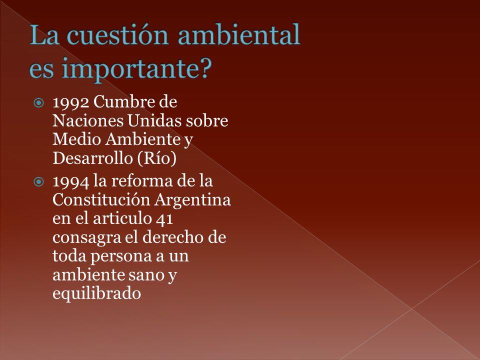 1992 Cumbre de Naciones Unidas sobre Medio Ambiente y Desarrollo (Río) 1994 la reforma de la Constitución Argentina en el articulo 41 consagra el dere