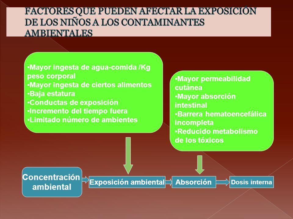 Exposición ambiental Dosis interna Absorción Concentración ambiental Mayor ingesta de agua-comida /Kg peso corporal Mayor ingesta de ciertos alimentos