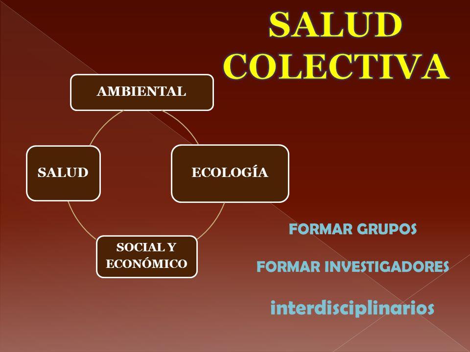AMBIENTAL ECOLOGÍA SOCIAL Y ECONÓMICO SALUD FORMAR GRUPOS FORMAR INVESTIGADORES interdisciplinarios