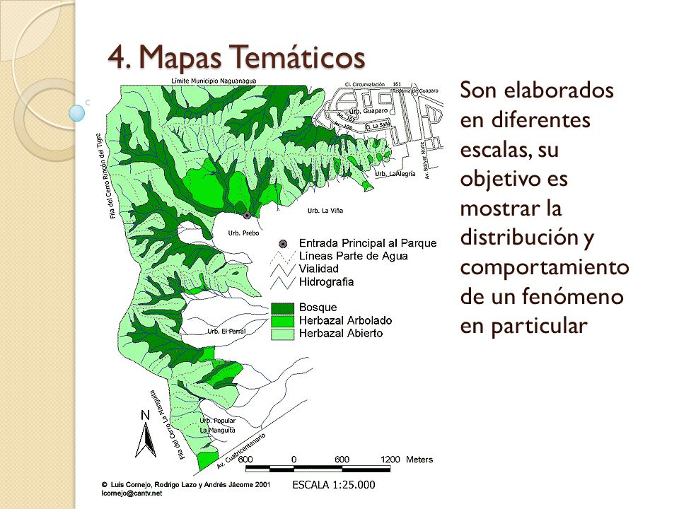 4. Mapas Temáticos Son elaborados en diferentes escalas, su objetivo es mostrar la distribución y comportamiento de un fenómeno en particular