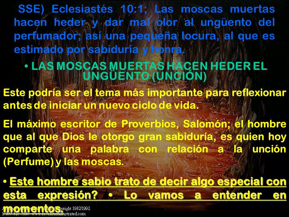 (SSE) Eclesiastés 10:1; Las moscas muertas hacen heder y dar mal olor al ungüento del perfumador; así una pequeña locura, al que es estimado por sabid