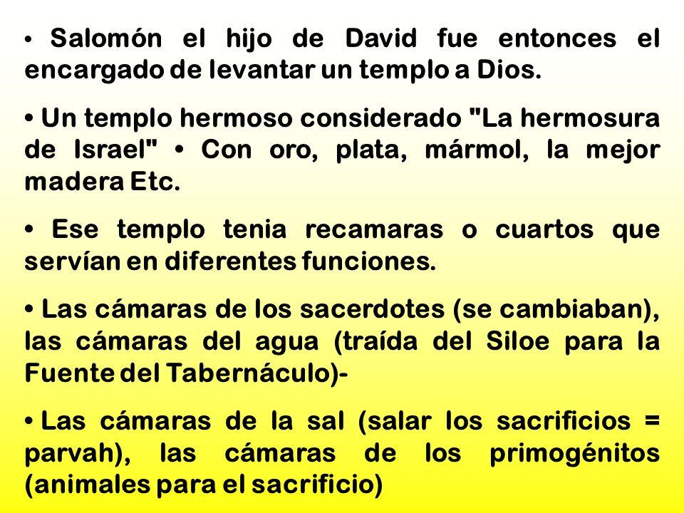 Salomón el hijo de David fue entonces el encargado de levantar un templo a Dios. Un templo hermoso considerado