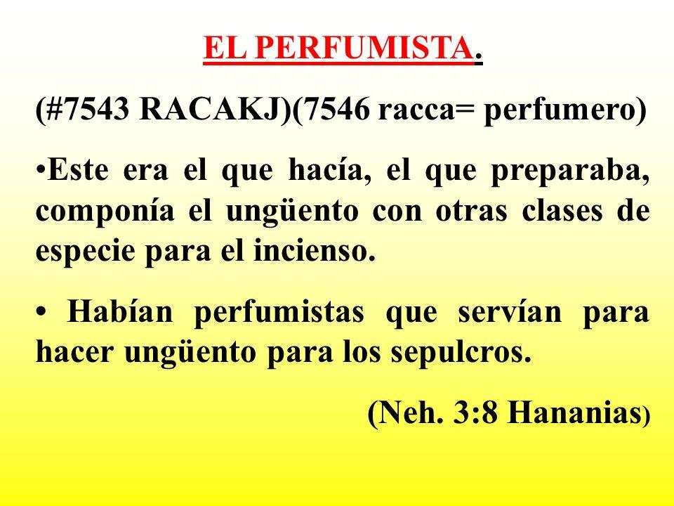 EL PERFUMISTA. (#7543 RACAKJ)(7546 racca= perfumero) Este era el que hacía, el que preparaba, componía el ungüento con otras clases de especie para el