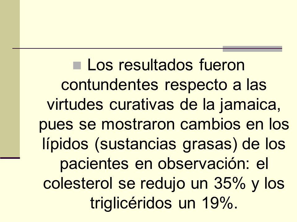 Los resultados fueron contundentes respecto a las virtudes curativas de la jamaica, pues se mostraron cambios en los lípidos (sustancias grasas) de lo