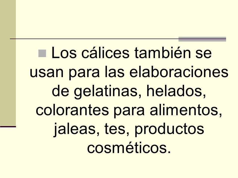 Los cálices también se usan para las elaboraciones de gelatinas, helados, colorantes para alimentos, jaleas, tes, productos cosméticos.