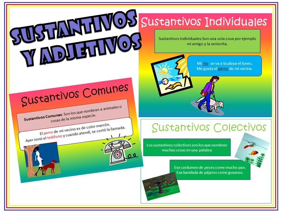 Trabajamos con un software educativo resolviendo actividades relacionadas con clasificación y definición de sustantivos y adjetivos