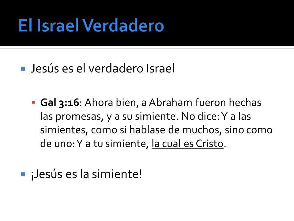 Jesús es el verdadero Israel Gal 3:16: Ahora bien, a Abraham fueron hechas las promesas, y a su simiente. No dice: Y a las simientes, como si hablase